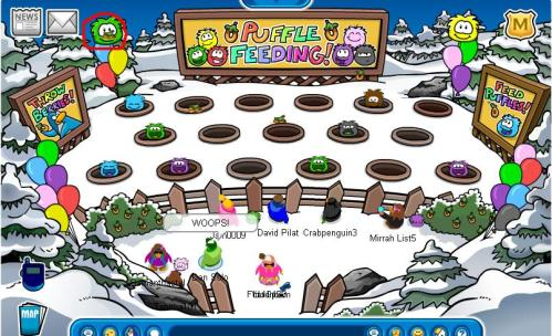 puffle-party-feed